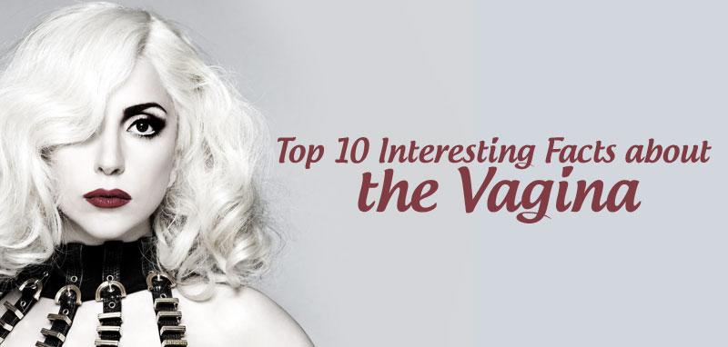 vagina-facts